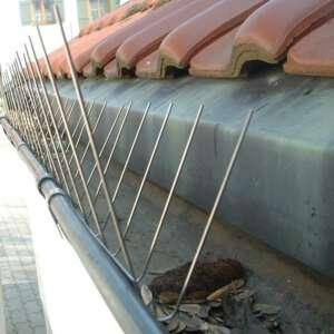Dachrinnenspitzen Taubenabwehr Sost