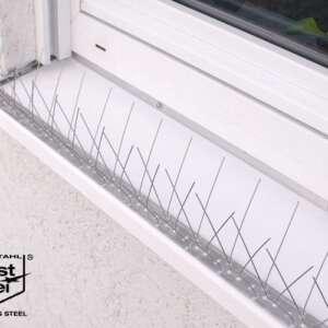 Taubenabwehr auf Fensterbank